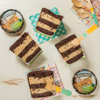 Ben & Jerry's Non-Dairy Layered Tub