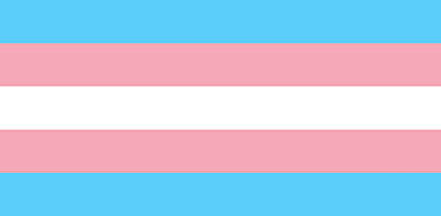 Trans Rights are Human Rights Flag