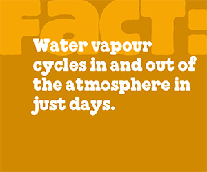 factoid-water-vapour.jpg (Print)