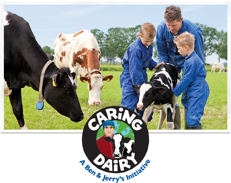 caring-dairy-header.png